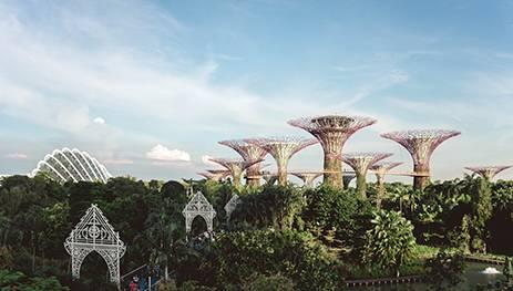 singapore company formation benefits