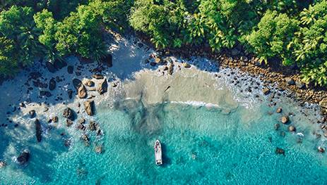 seychelles company formation benefits